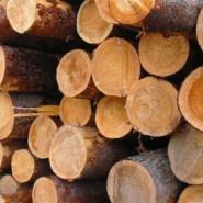 Древесина в реставрации мебели