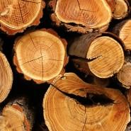 Защита и консервация древесины